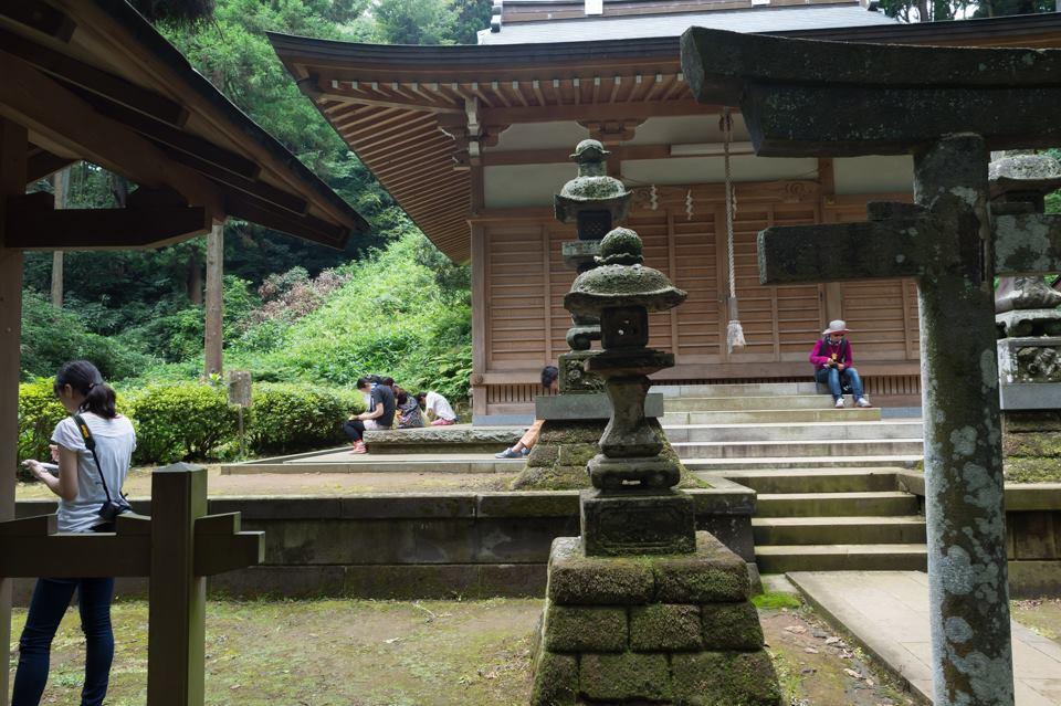 by masabumi kimura (1)
